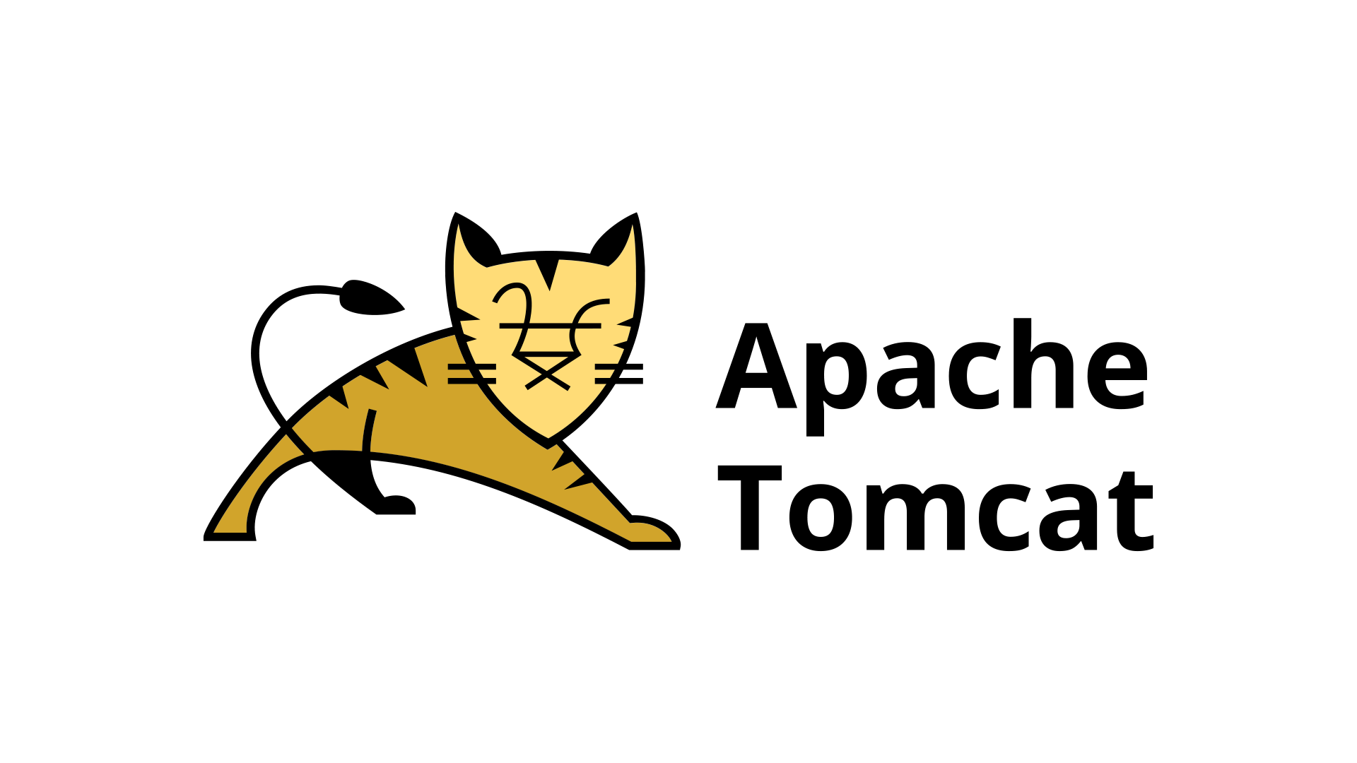 Apache Tomcat hosting door True