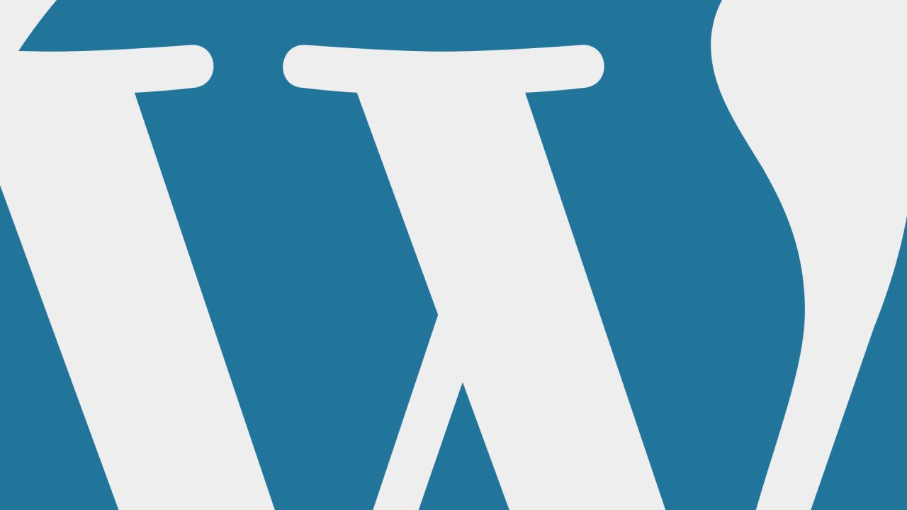 Beveiligingstips Wordpress