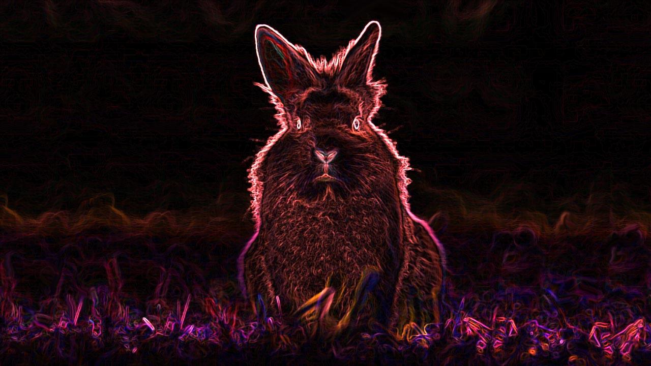 BadRabbit ransomware aanval