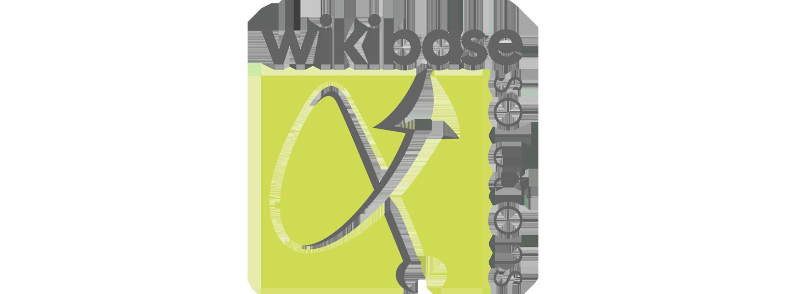 Wikibase Solutions partner logo