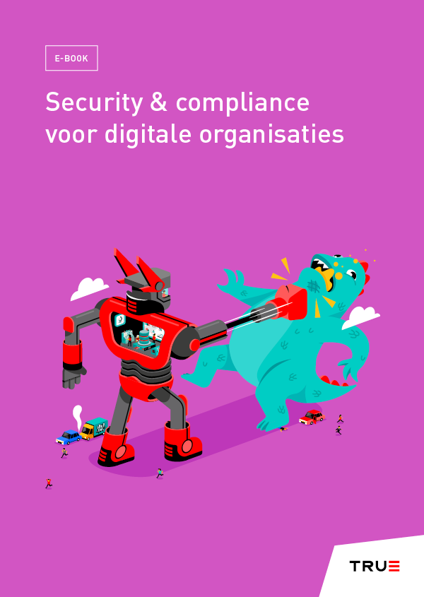 Compliance en Security voor digitale organisaties - E-Book