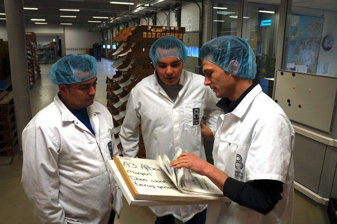 Gefelicitaart prints voor taarten